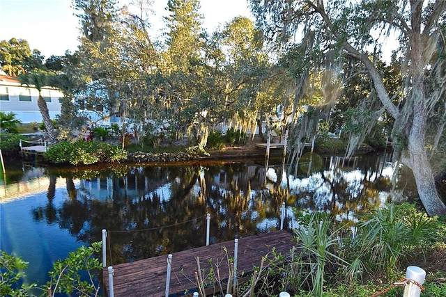 64 King Arthur Drive, Nokomis, FL 34275 (MLS #N6113156) :: Visionary Properties Inc