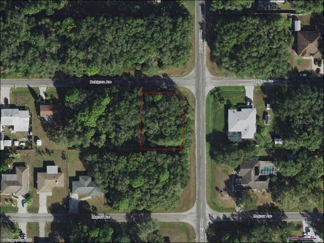 14533 Dahlgren Avenue, Port Charlotte, FL 33953 (MLS #N6113200) :: Young Real Estate
