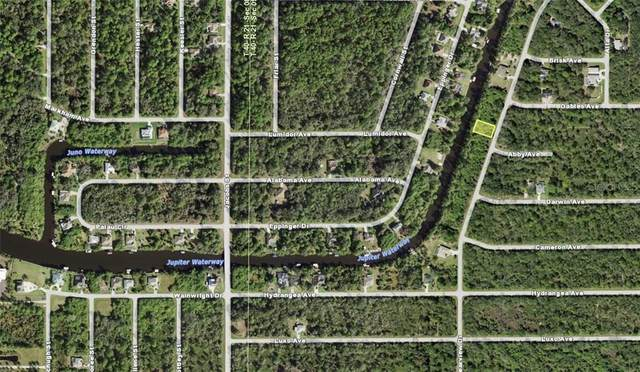 1399 Clearview Drive, Port Charlotte, FL 33953 (MLS #N6113704) :: The Duncan Duo Team