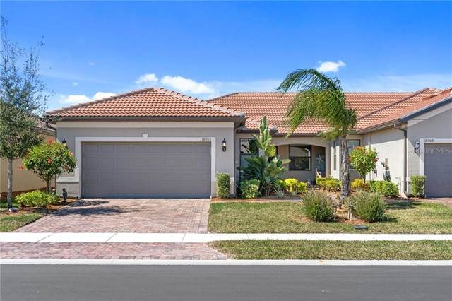 18903 Lanuvio Street, Venice, FL 34293 (MLS #N6114122) :: Dalton Wade Real Estate Group