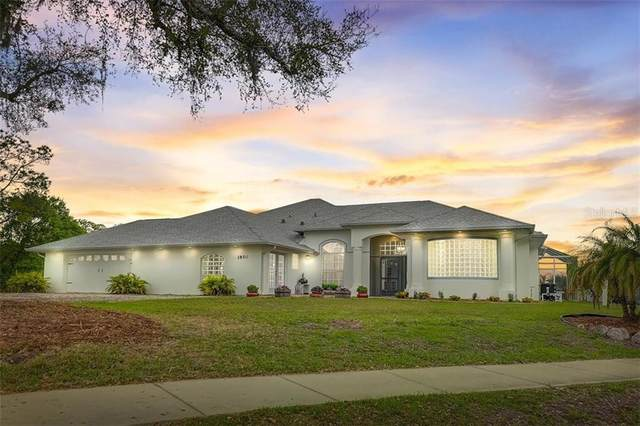 1850 W Hillsborough Boulevard, North Port, FL 34286 (MLS #N6114136) :: Pepine Realty