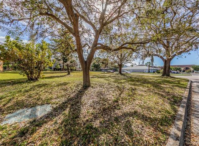 Palmetto Court, Venice, FL 34285 (MLS #N6114152) :: Prestige Home Realty