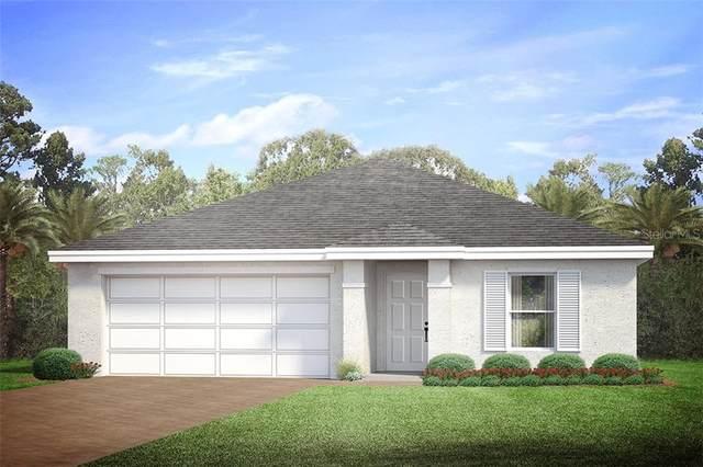 5288 Bryan Terrace, Port Charlotte, FL 33981 (MLS #N6114187) :: The Light Team