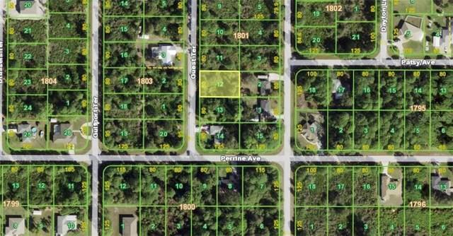 5552 Guest Terrace, Port Charlotte, FL 33981 (MLS #N6114760) :: Premium Properties Real Estate Services