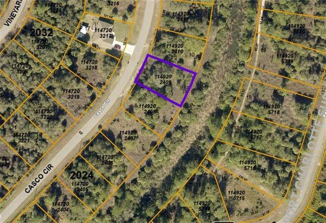 Casco Circle, North Port, FL 34288 (MLS #N6114943) :: Gate Arty & the Group - Keller Williams Realty Smart