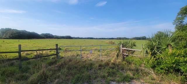 SW Gordon Hay Road, Arcadia, FL 34269 (MLS #N6114957) :: Rabell Realty Group
