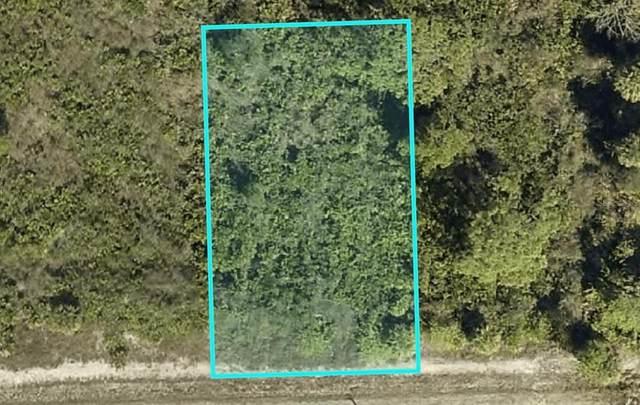 3102 65TH Street W, Lehigh Acres, FL 33971 (MLS #N6115051) :: Armel Real Estate