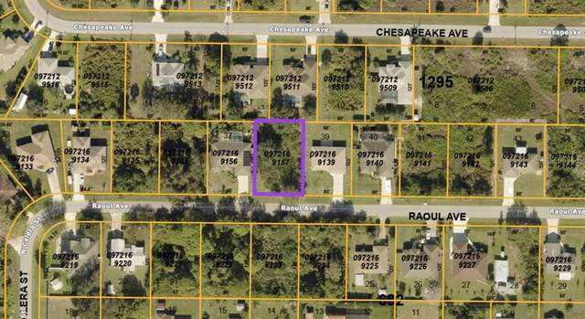 Raoul Avenue, North Port, FL 34291 (MLS #N6115149) :: MVP Realty
