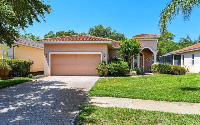 332 Rio Terra, Venice, FL 34285 (MLS #N6115223) :: Kelli and Audrey at RE/MAX Tropical Sands