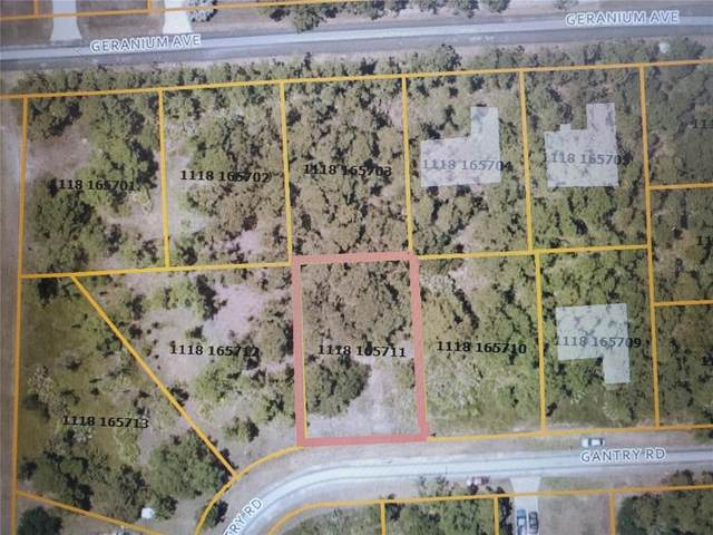Gantry Road, North Port, FL 34288 (MLS #N6115331) :: The Lersch Group