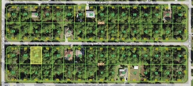 12039 Joyner Avenue, Port Charlotte, FL 33953 (MLS #N6115335) :: CENTURY 21 OneBlue