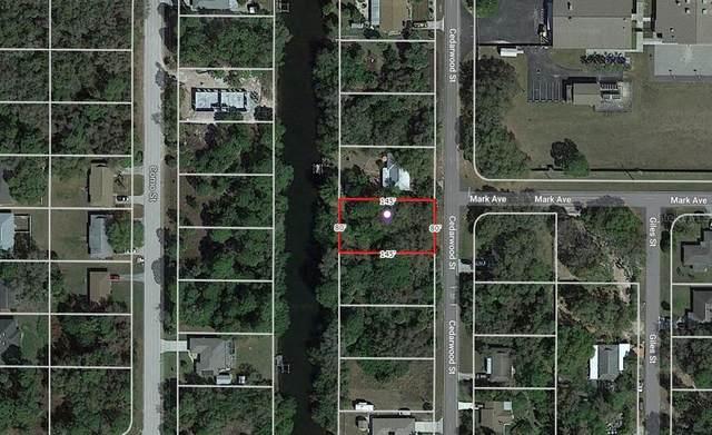 2089 Cedarwood Street, Port Charlotte, FL 33948 (MLS #N6115352) :: The Lersch Group