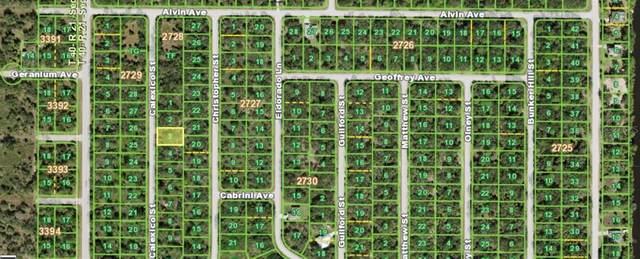 3092 Calexico Street, Port Charlotte, FL 33948 (MLS #N6115451) :: Pristine Properties
