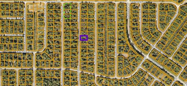 Dunmore Street, North Port, FL 34288 (MLS #N6115453) :: Prestige Home Realty