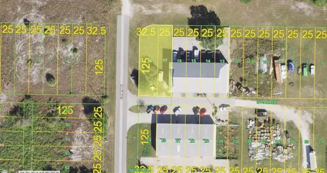 27075 Tunney Terrace, Punta Gorda, FL 33983 (MLS #N6115630) :: Bustamante Real Estate