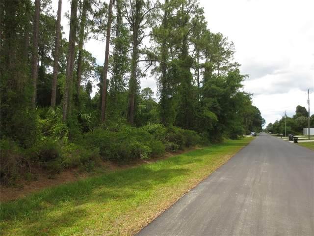Clearfield Street, North Port, FL 34286 (MLS #N6115722) :: Team Pepka
