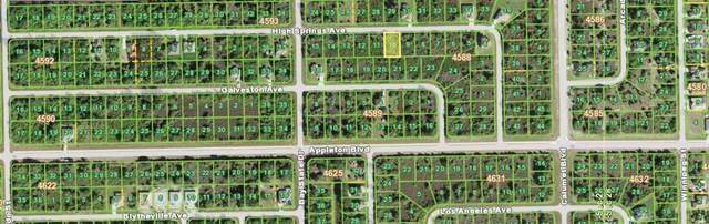 13411 High Springs Avenue, Port Charlotte, FL 33981 (MLS #N6115776) :: Everlane Realty