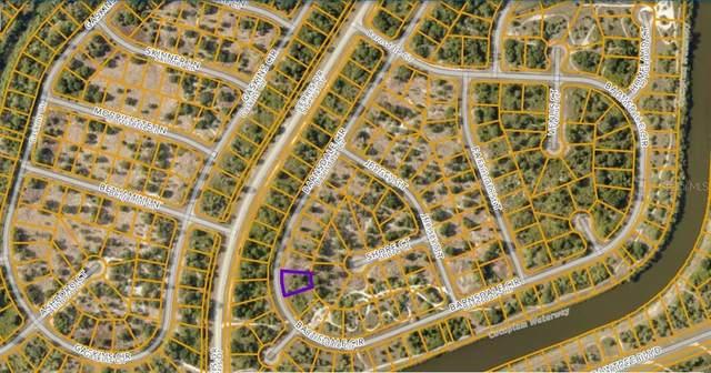 Barnsdale Circle, North Port, FL 34288 (MLS #N6115779) :: Coldwell Banker Vanguard Realty