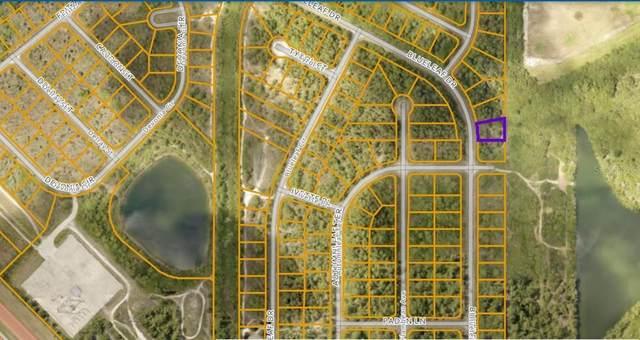 Blueleaf Drive, North Port, FL 34288 (MLS #N6115781) :: Everlane Realty
