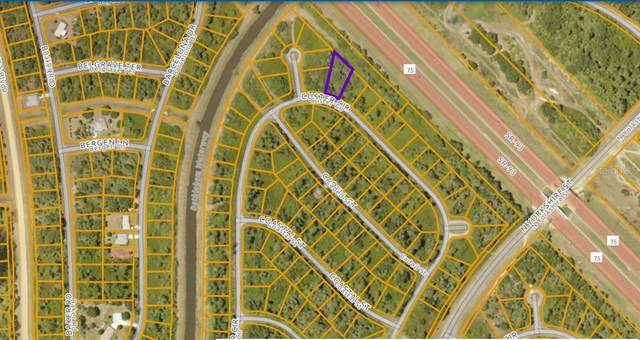 Custer Circle, North Port, FL 34288 (MLS #N6115832) :: Griffin Group