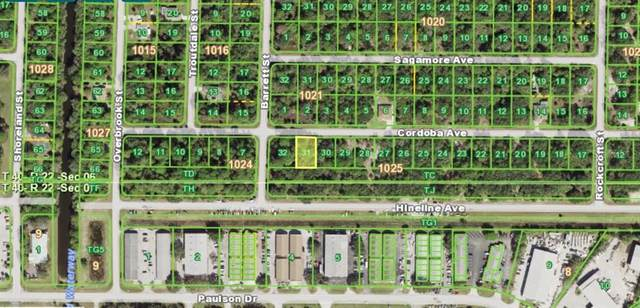 18337 Cordoba Avenue, Port Charlotte, FL 33954 (MLS #N6115877) :: Frankenstein Home Team