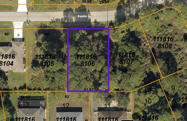 Exotic Avenue, North Port, FL 34288 (MLS #N6115916) :: Rabell Realty Group