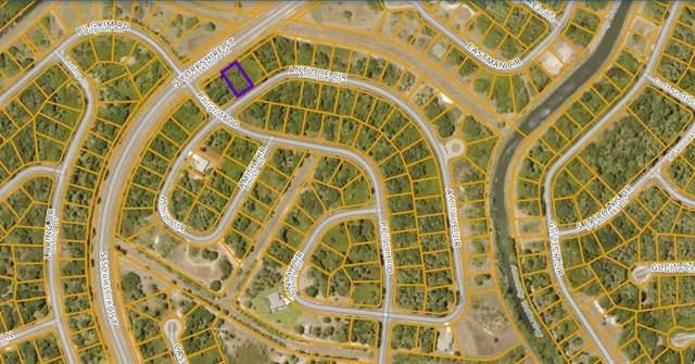 Antique Circle, North Port, FL 34288 (MLS #N6115939) :: Coldwell Banker Vanguard Realty