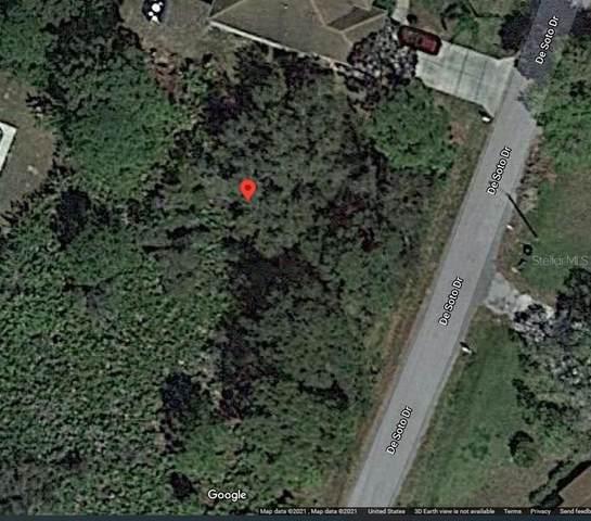 Desoto Drive, North Port, FL 34287 (MLS #N6115968) :: Frankenstein Home Team
