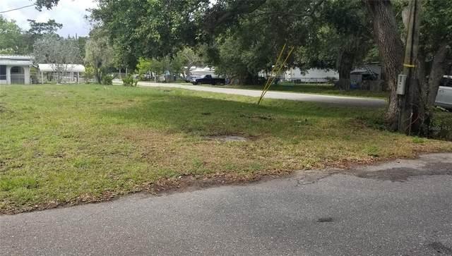 N Ruby Avenue, Nokomis, FL 34275 (MLS #N6115982) :: GO Realty