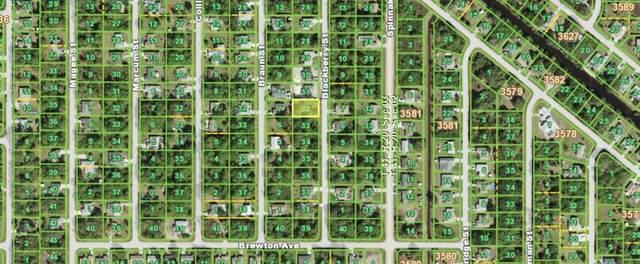 6253 Blackberry Street, Englewood, FL 34224 (MLS #N6115992) :: The Home Solutions Team | Keller Williams Realty New Tampa