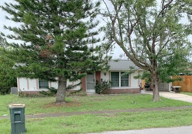 8367 Cristobal Avenue, North Port, FL 34287 (MLS #N6116020) :: Vacasa Real Estate