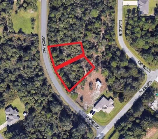 Ferendina Street, North Port, FL 34291 (MLS #N6116039) :: Coldwell Banker Vanguard Realty
