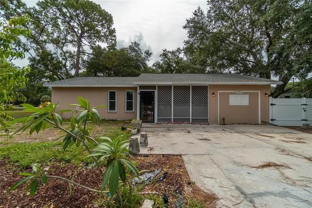 2505 Shamrock Drive, Venice, FL 34293 (MLS #N6116078) :: Vacasa Real Estate