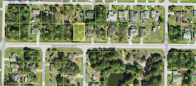 10092 Oceanspray Boulevard, Englewood, FL 34224 (MLS #N6116090) :: Vacasa Real Estate