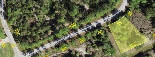 4174 Elvington Road, Port Charlotte, FL 33981 (MLS #N6116432) :: Everlane Realty