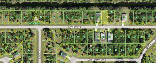 236 Baytree Drive, Rotonda West, FL 33947 (MLS #N6116597) :: Griffin Group