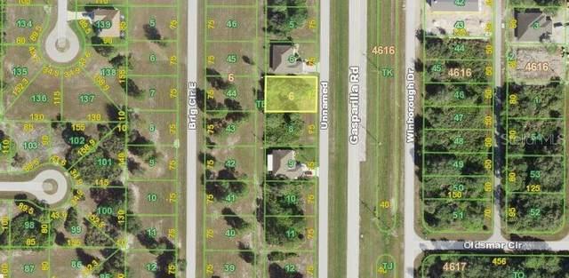 10161 Gasparilla Road, Port Charlotte, FL 33981 (MLS #N6116615) :: Rabell Realty Group