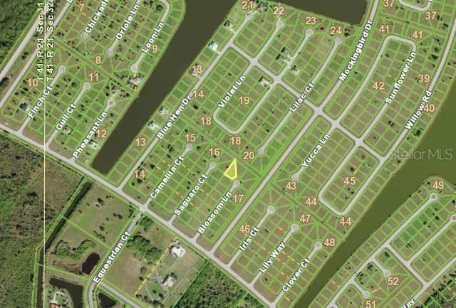 15 Blossom Lane, Placida, FL 33946 (MLS #N6116618) :: Zarghami Group