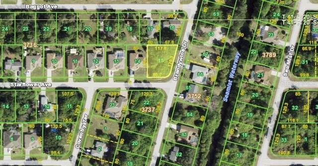 11428 Starflower Avenue, Englewood, FL 34224 (MLS #N6116631) :: Bustamante Real Estate