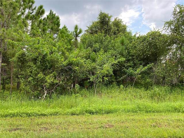Caesar Road, North Port, FL 34288 (MLS #N6116645) :: Vacasa Real Estate
