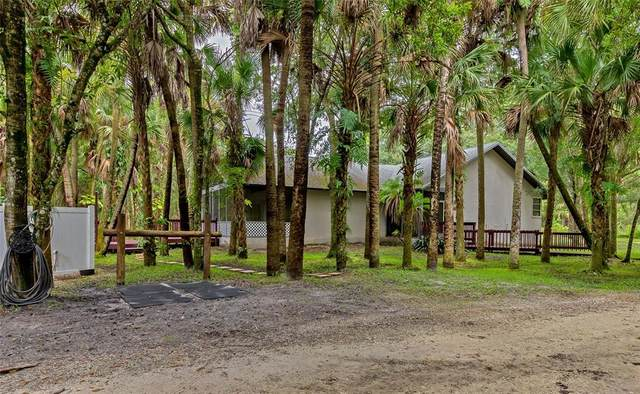 6331 Reisterstown Road, North Port, FL 34291 (MLS #N6116656) :: The Robertson Real Estate Group