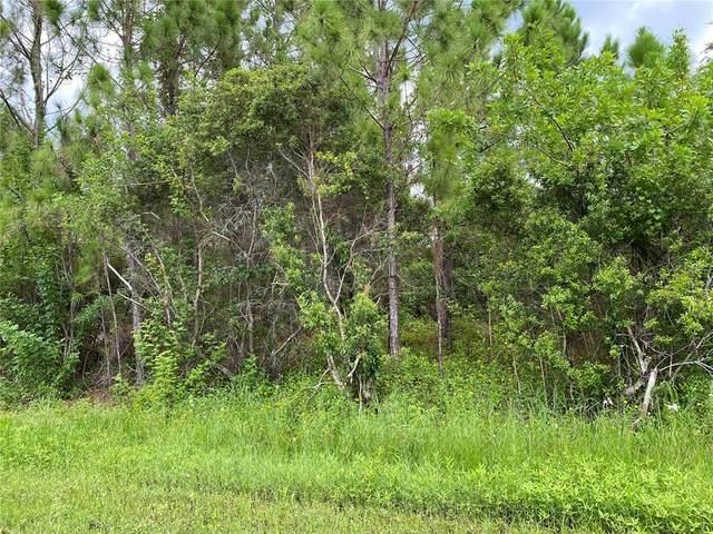 Lucaya Avenue, North Port, FL 34286 (MLS #N6116676) :: Cartwright Realty