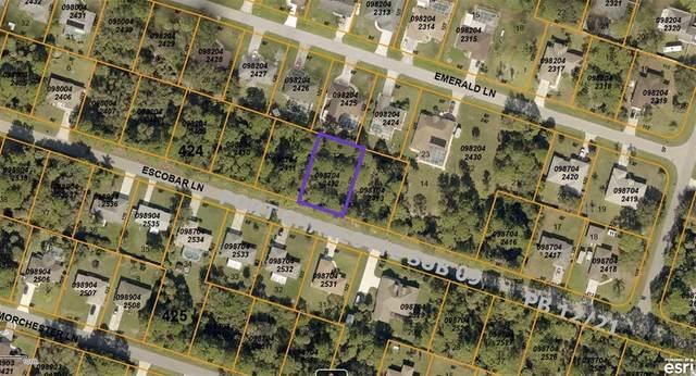 Escobar Lane, North Port, FL 34286 (MLS #N6116688) :: Sarasota Property Group at NextHome Excellence