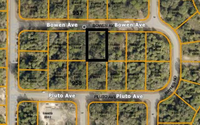 Bowen Avenue, North Port, FL 34288 (MLS #N6116697) :: CARE - Calhoun & Associates Real Estate