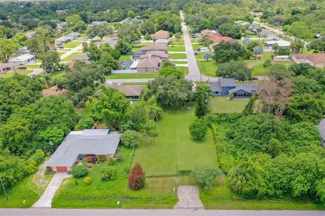 1100 Ample Avenue, Port Charlotte, FL 33948 (MLS #N6116702) :: Carmena and Associates Realty Group