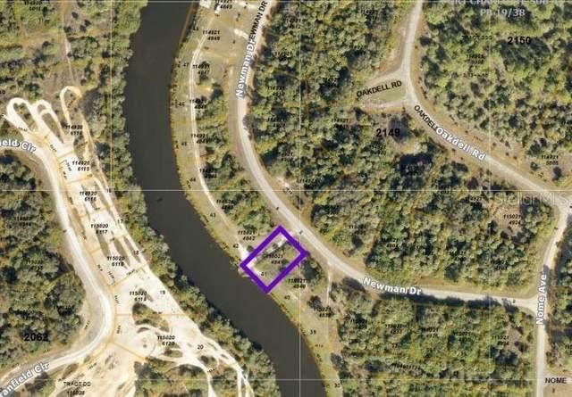 41 Newman Drive, North Port, FL 34288 (MLS #N6116747) :: EXIT King Realty