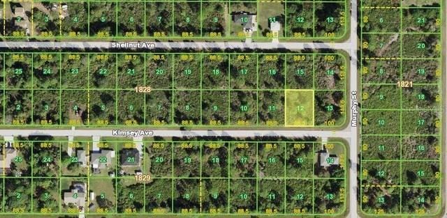 12172 Kimsey Avenue, Port Charlotte, FL 33981 (MLS #N6116781) :: EXIT Gulf Coast Realty
