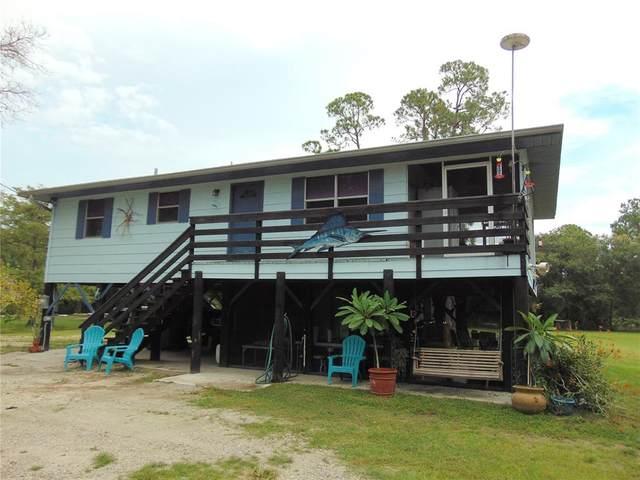 2207 SW Blossom Avenue, Arcadia, FL 34266 (MLS #N6116950) :: GO Realty