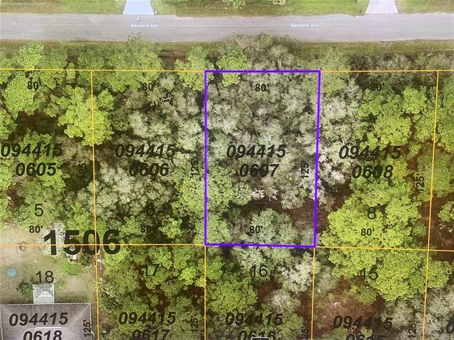 Ganyard Avenue, North Port, FL 34291 (MLS #N6117385) :: Zarghami Group
