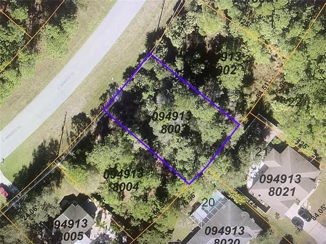 N Biscayne Drive, North Port, FL 34291 (MLS #N6117390) :: Premium Properties Real Estate Services